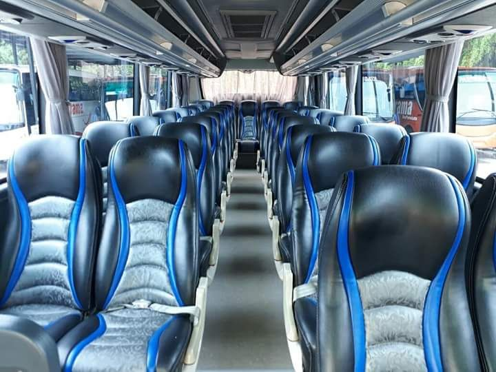 Medium Bus Panorama Pariwisata