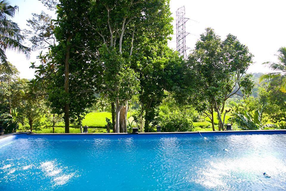 villa sawah resort