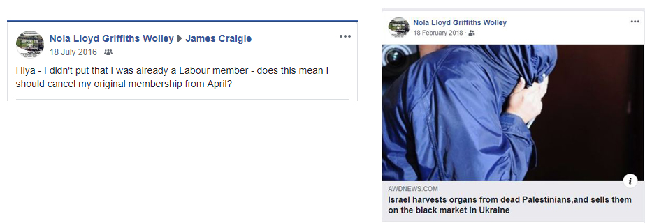 antisemitic noal