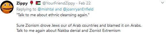 ethnic cleansing the zionists fault