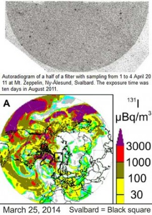 Atmospheric Chemistry and Physics Discussions, Atmospheric removal times of the aerosol-bound radionuclides 137Cs and 131I during the months after the Fukushima Dai-ichi nuclear power plant accident – a constraint for air quality and climate models, May 2012: Hot particles (particles that carry very high radioactivity, e.g., fragments of the nuclear fuel) were present in the FD-NPP plume.