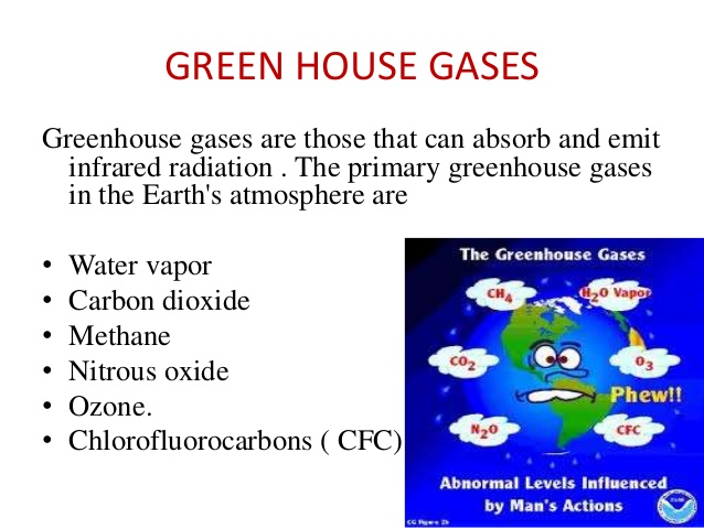 global-environmental-change-an-account-on-global-warming-and-ozone-depletion-its-causes-its-effects-and-measures-taken-to-reduce-this-11-638