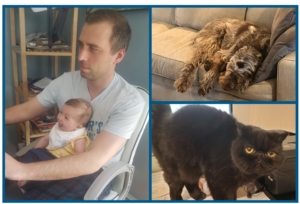 three-pane image showing an employee working at a laptop with a baby seated on his lap, a dog napping on a couch, and a cat on a desk