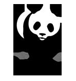 Donate to the World Wildlife Fund