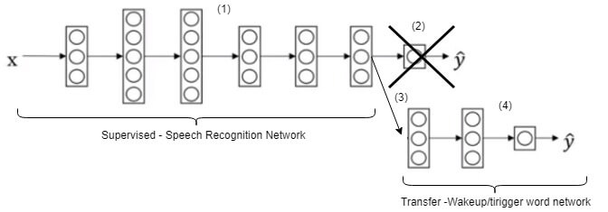 Transfer Learning - network