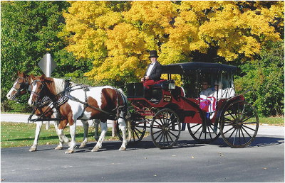 the rochester inn surprise or treat - carriage ride