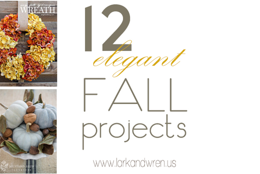 12 fall projects