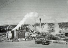 Sawmills in Shelton, Washington