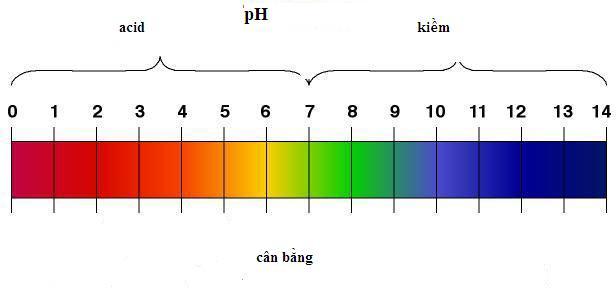 Độ pH của bể bơi
