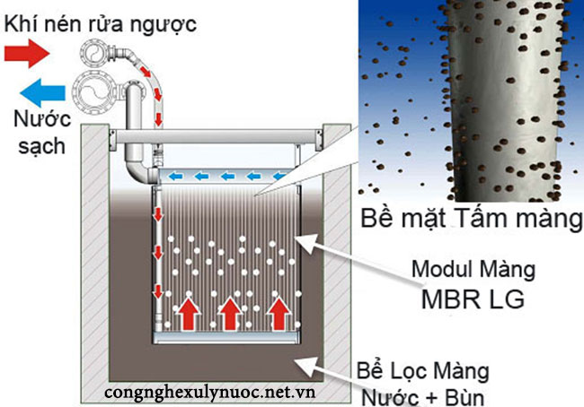Nguyên lý hoạt động màng lọc MBR