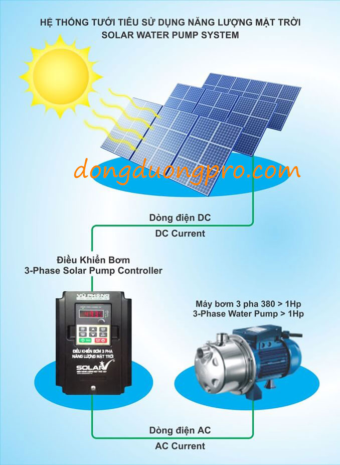 Hệ thống bơm năng lượng mặt trời