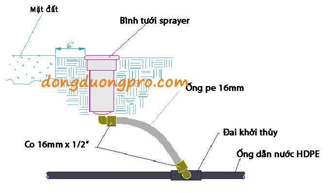 Chi tiết bản vẽ kết nối giữa ống HDPE và béc phun nước xoay