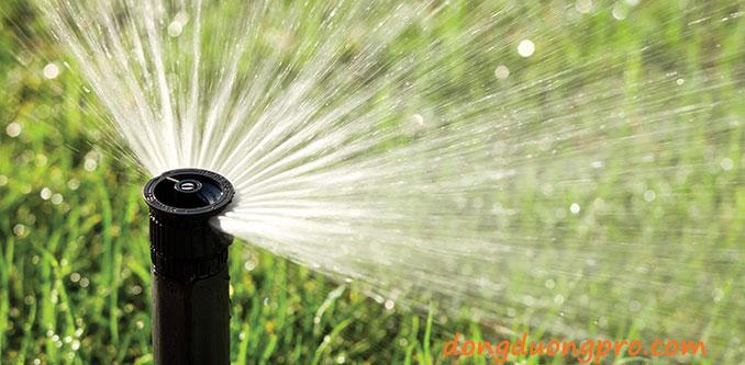Hình ảnh phun mưa Bình tưới Sprays RainBird