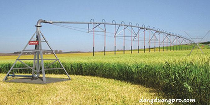 Cách lắp đặt hệ thống tưới phun mưa theo dạng xoay trục