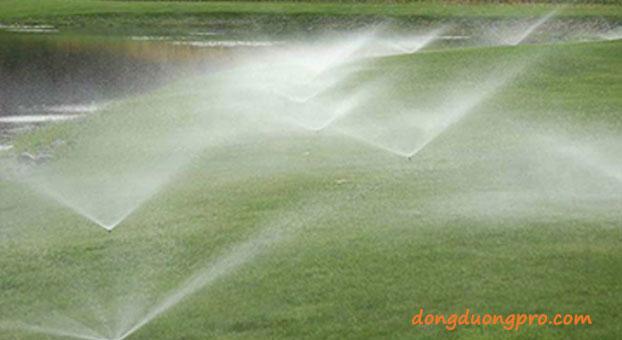 Hệ thống tưới cây, cỏ cho sân vườn -hệ thống tưới nước phun mưa
