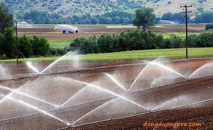 Hệ thống tưới phun nước có thể di chuyển tử khu này đến khu khác