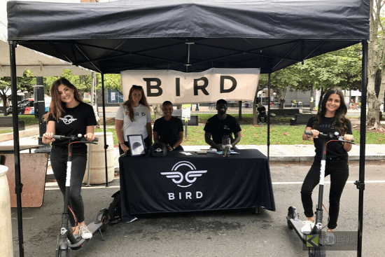 street teams bird scooters