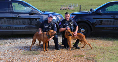 Scent Discriminate Bloodhound Trailing Winnebago County Sheriff's Office