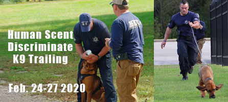 Scent Discriminate K9 Training