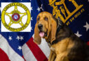Liberty County Bloodhound Locates Armed Robbery Suspect