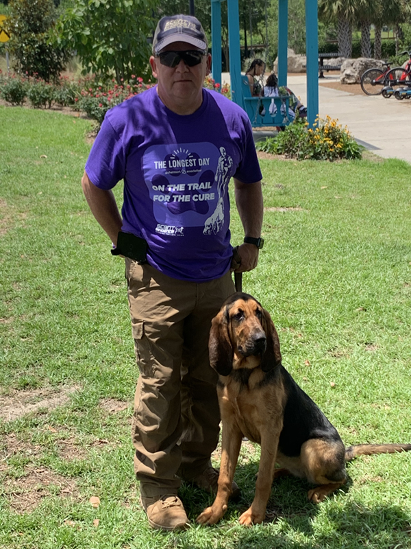 Daisy - Scent Discriminate Bloodhound for sale