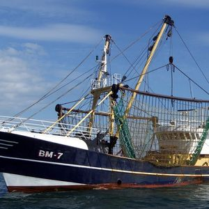 Fishing Industry Applications