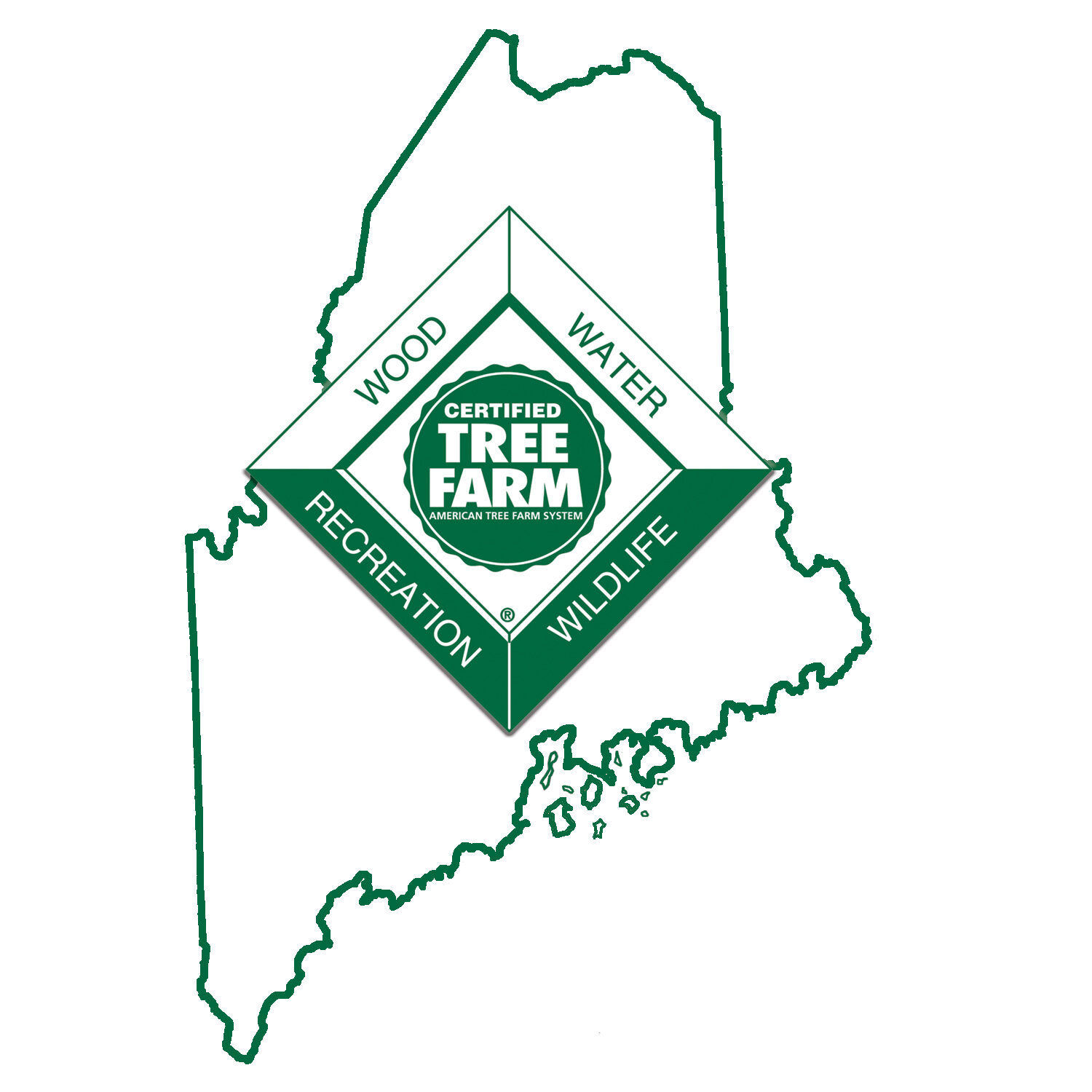 Maine Tree Farm