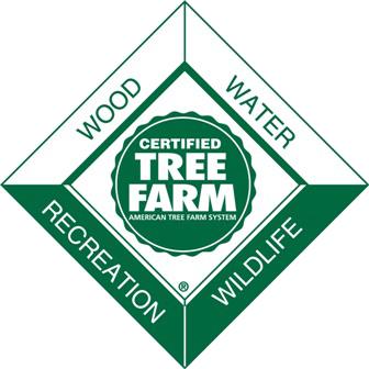 Maine Tree Farm