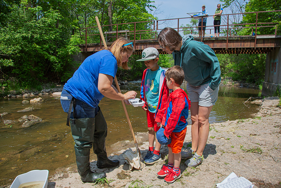 Nenn shows visitors how to identify macro-invertebrates as others look on from bridge