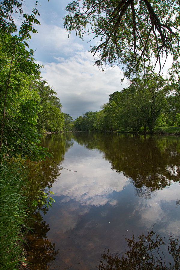tree-lined Milwaukee River with reflections of clouds