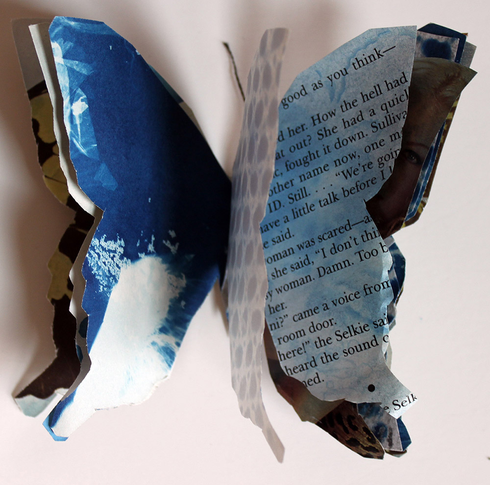 Individual butterfly book