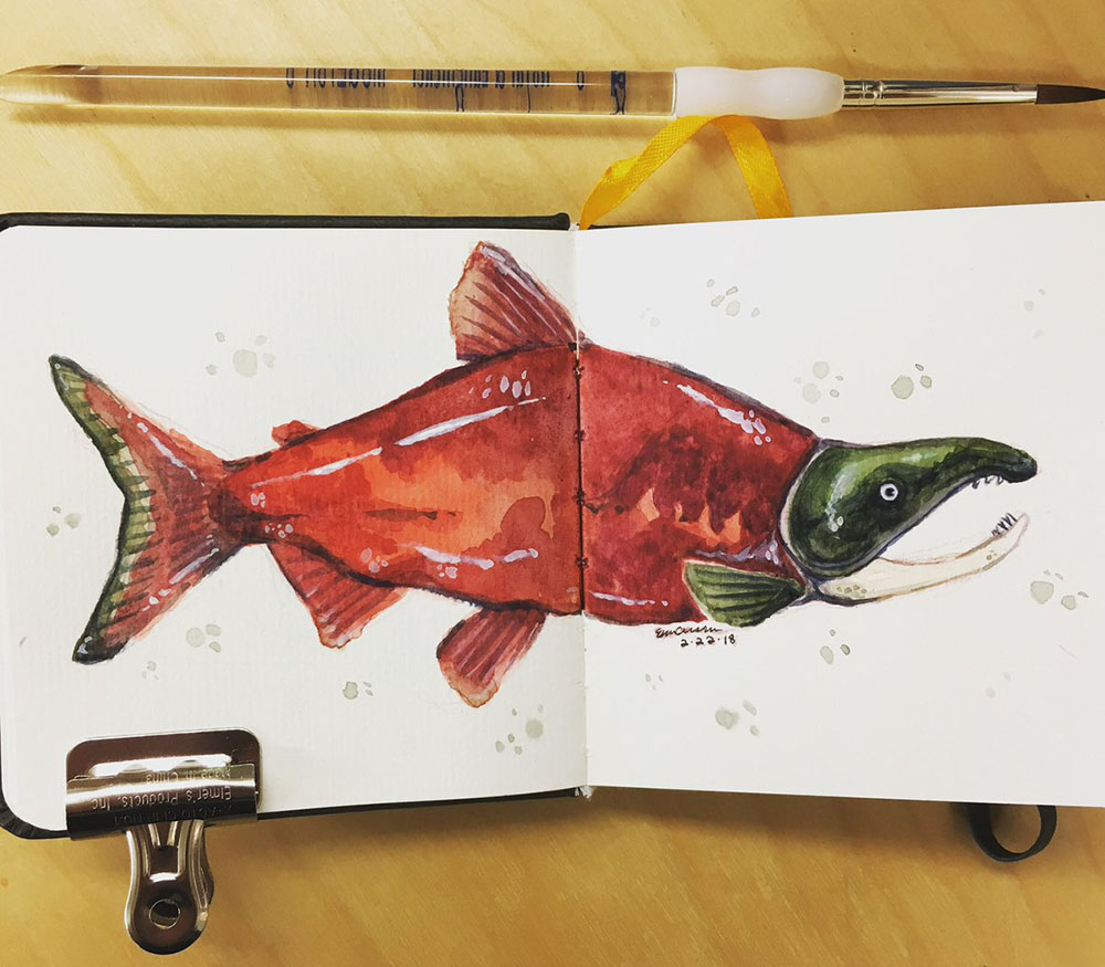 Sketchbook study of a Sockeye Salmon, watercolor