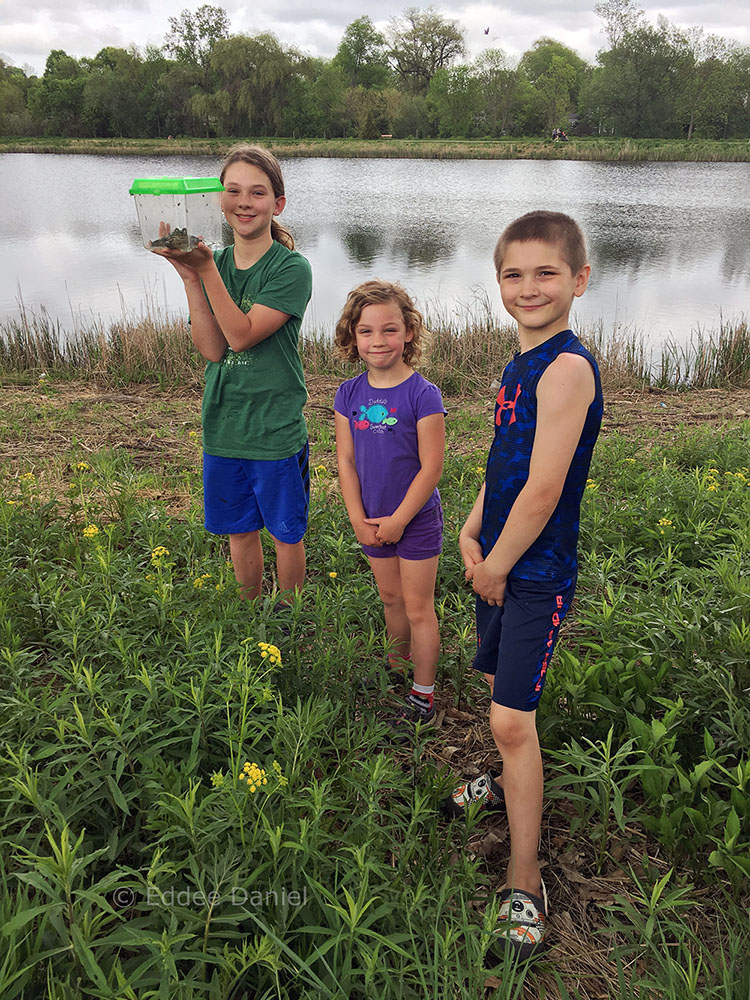 """""""Look at the enormous frog we caught!"""" Tessa, Nora and Kean at Elm Grove Park."""