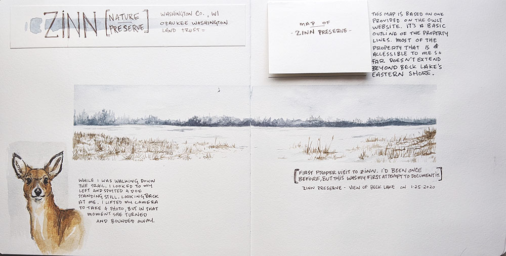 """""""Winter at Zinn Preserve,"""" January 2020 journal entry, watercolor and micron pen"""