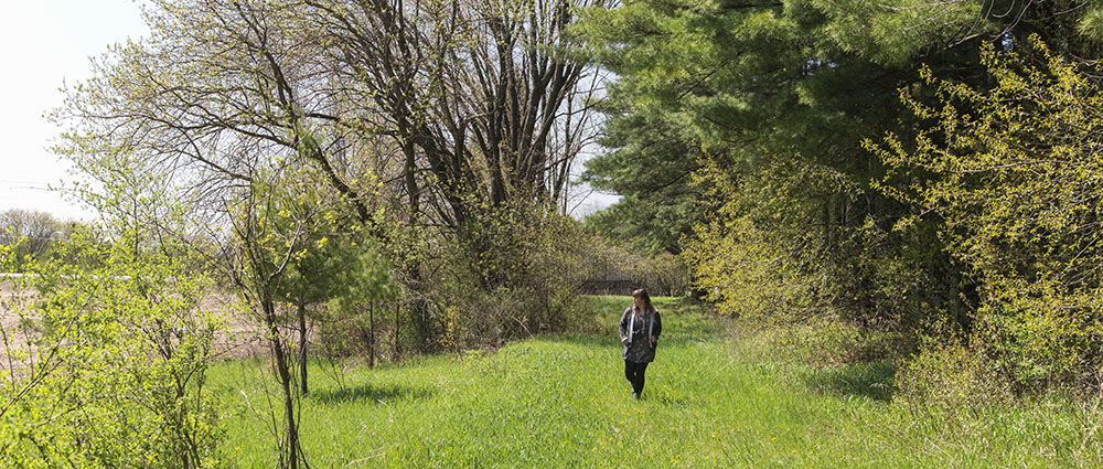 Trail in Shannon Preserve