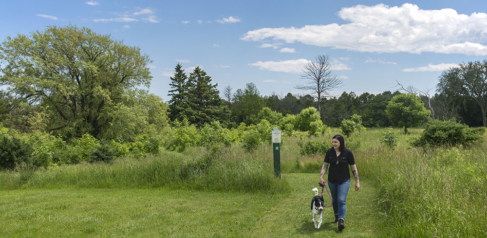 The artist and her dog, Dotty, on the trail at Forest Beach Migratory Preserve