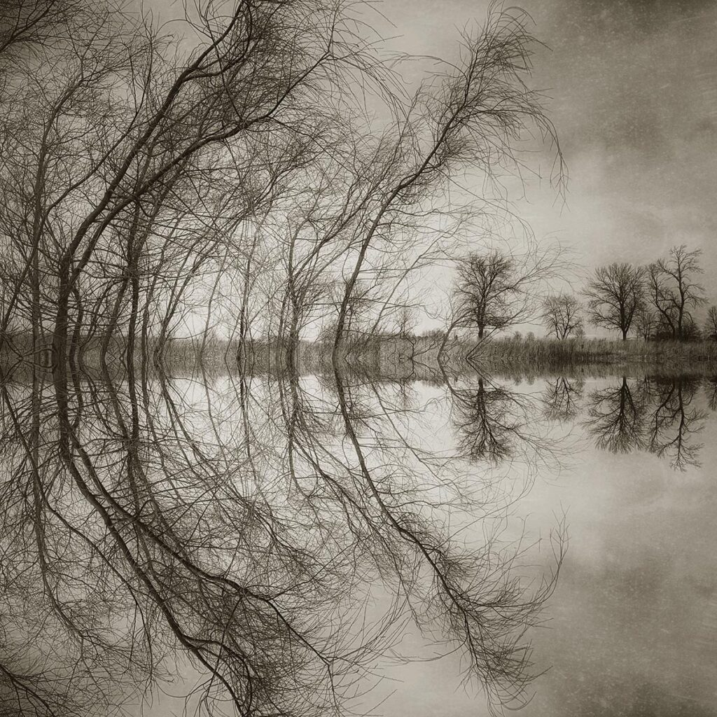 Symmetry, an iPhone photograph by Vicki Reed