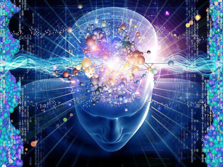 molecules of brain