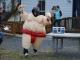 sumo-wrestling-023