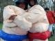 sumo-wrestling-095