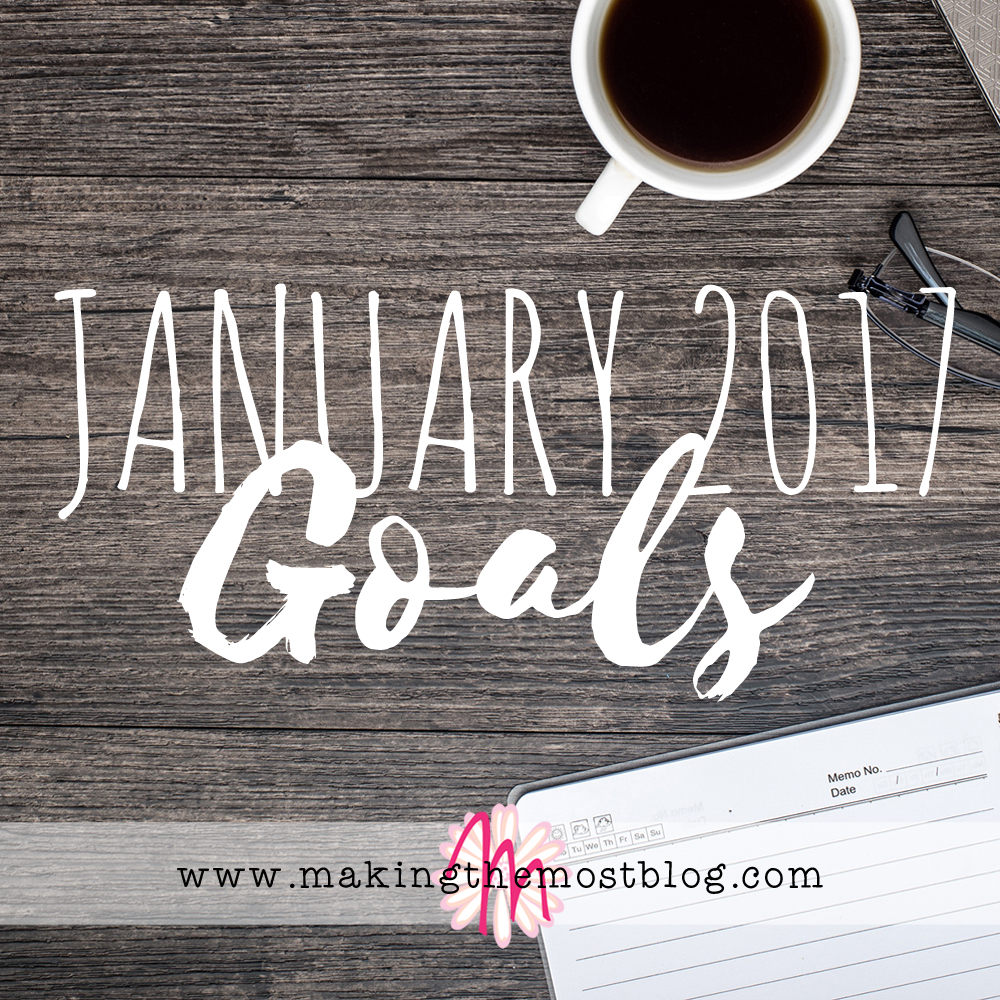 January 2017 Goals   Making the Most Blog