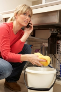 "ALT=""Homeowner's Insurance; woman on phone to plumber; Insurance Problem Solver"""