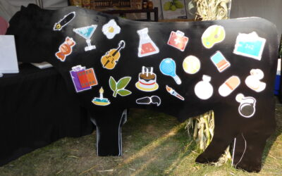 One Idea For An Agriculture Education Display