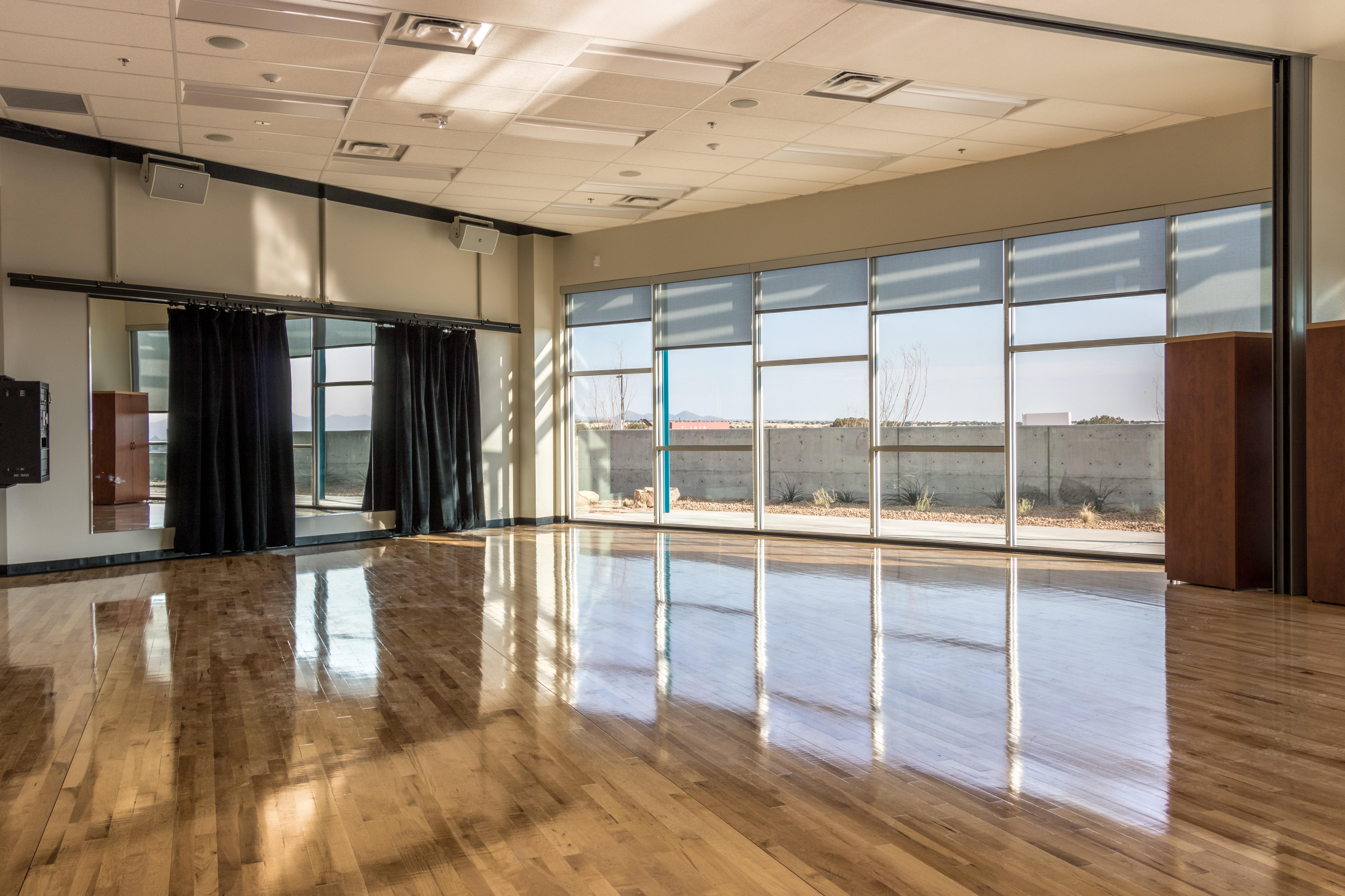 IAIA Multipurpose Performing Arts & Fitness Center Dance Studio