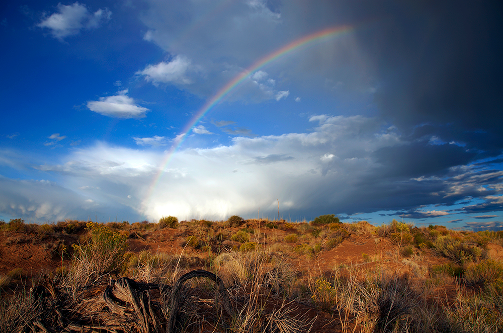 An Excerpt on Climate Change and its Effect on the Navajo Nation – Beyond Green