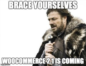Brace Yourselves, WooCommerce 2.1 is coming.