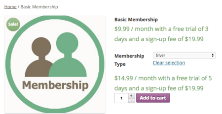 Sample membership product