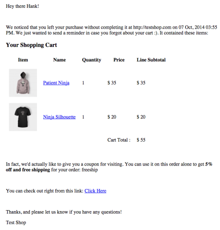 WooCommerce Abandoned Cart Pro Review   email