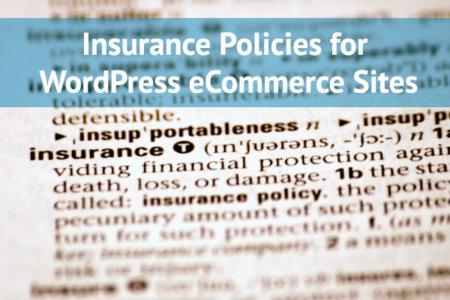 eCommerce Insurance policies
