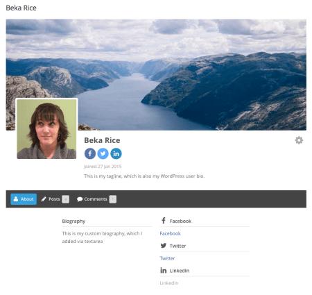 Ultimate Member Review: user profile